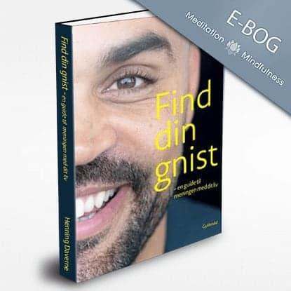 E-bog, Find din gnist af Henning Daverne