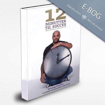 Meditation e-bog, 12 Minutter til Succes
