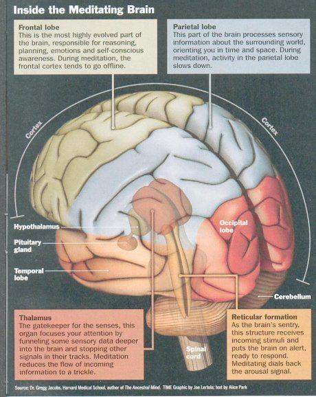 Meditering hvorfor